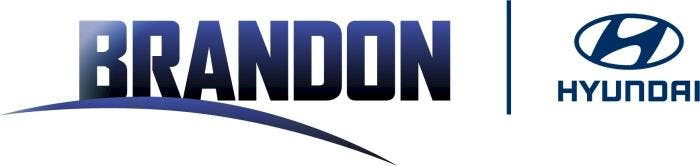 Brandon Hyundai, Tampa, FL, 33619