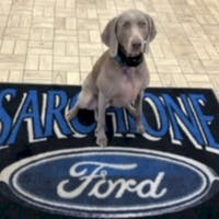 Shelby West at Sarchione Ford Of Waynesburg