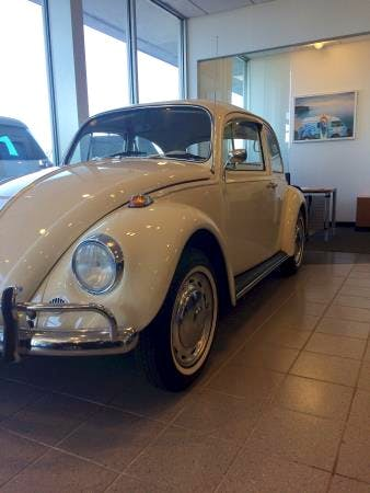 Donaldsons Volkswagen, Sayville, NY, 11782